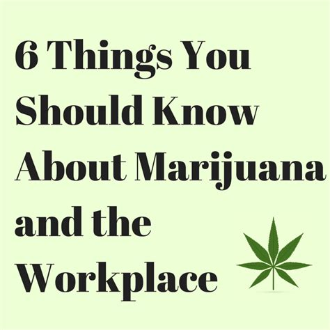 everything you know about 6 things you should know about marijuana and the workplace employment screening services