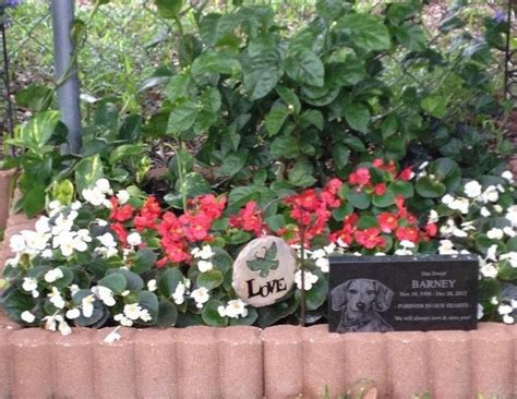 Pet Memorial Ideas For The Garden 46 Best In Memory Of Boomer Images On