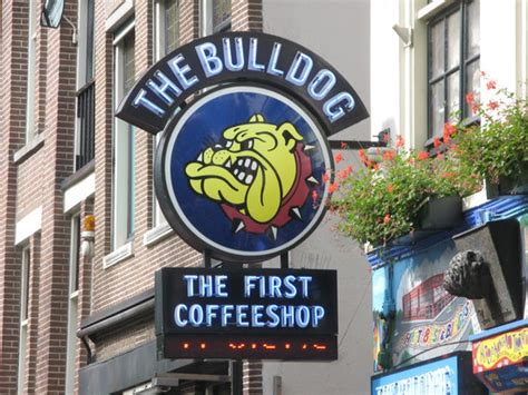 always Lovely   Picture of The Bulldog Hotel, Amsterdam   TripAdvisor