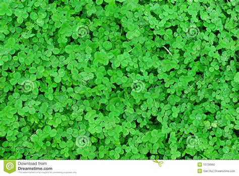 Clover Pictures