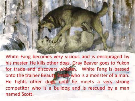 book report on white fang white fang book report summary proofreadingxml web fc2