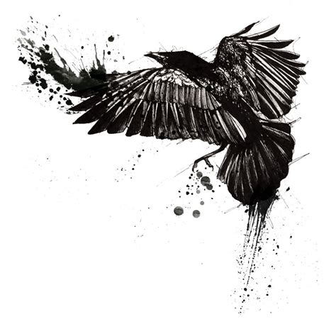 crow tattoo designs top 10 designs when we think about a unique