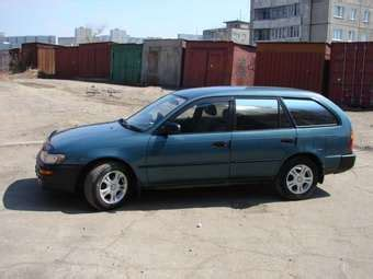1996 Toyota Corolla For Sale 1996 Toyota Corolla Wagon For Sale