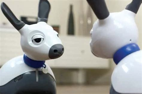 robot dog   artificial woof  sounds   real   scientist