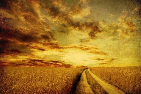 embrace grace bible study embrace repentance liz curtis