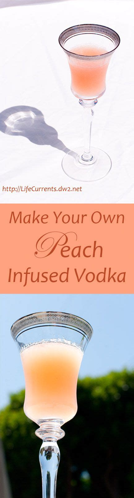 Happy Hour Lotus Vodka by Best 25 Happy Hour Food Ideas On Happy Hour