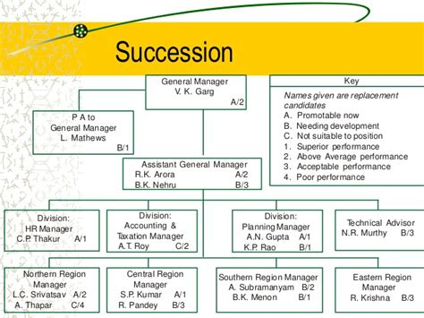 employee succession plan template 5 career planning succession planning