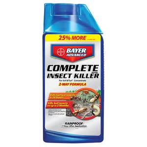 Shop bayer advanced 40 oz complete insect killer qt concentrate at