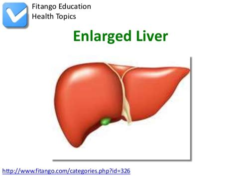enlarged image enlarged liver