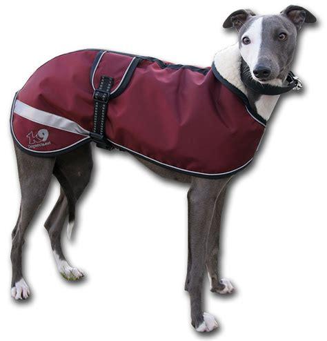 puppy coats coats breeds picture