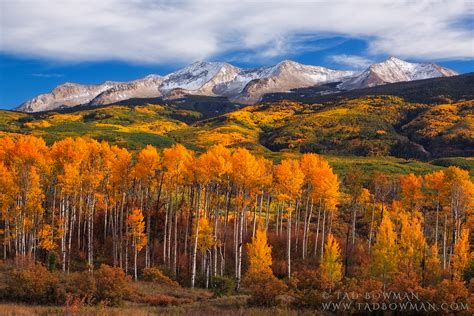 colorado color east beckwith colors gunnison national forest colorado