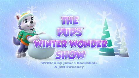 Paw Patrol Winter Series Zy638 the pups winter show paw patrol wiki fandom powered by wikia