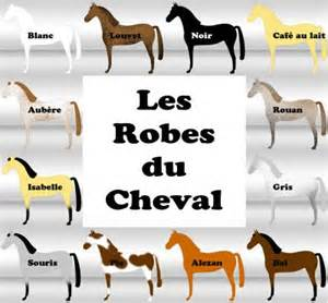 emelyne routier article les robes et leur classification