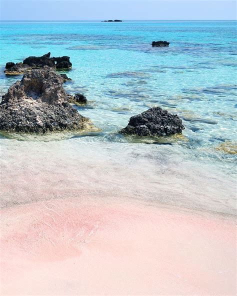 beaches with pink sand best 25 pink sand ideas on pink sand