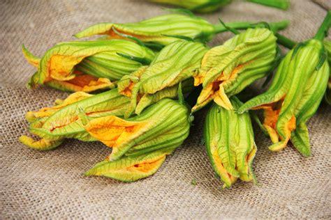 ricette fiori di zucca non fritti ricetta fiori di zucca in pastella gnambox