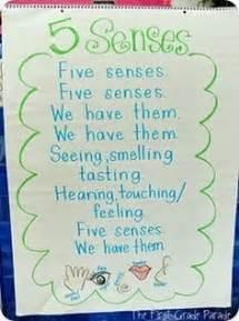 Senses preschool on pinterest my five senses the five and senses
