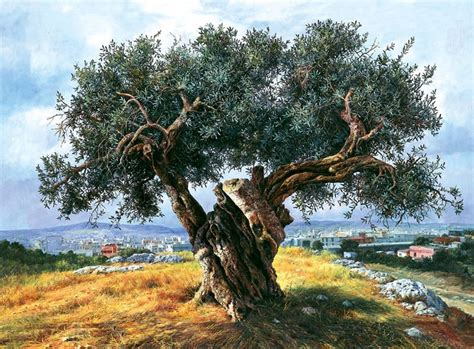 olive art 1000 images about olive art on pinterest trees vincent
