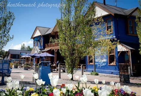 blue pub blue pub methven au 62 a u 7 3 2018 prices reviews new zealand photos