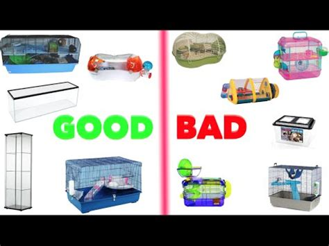 bad hamster cages mainly europe