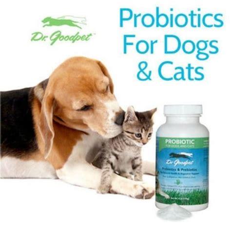 probiotics for dogs probiotics for dogs cats dr goodpet ebay