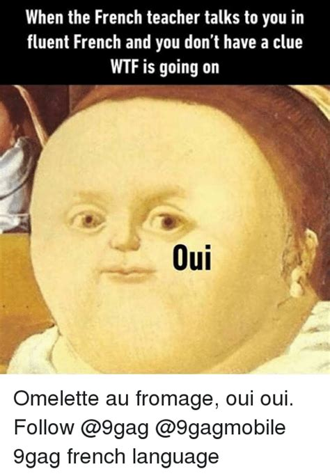 Meaning Of Meme In French - 25 best memes about french language french language