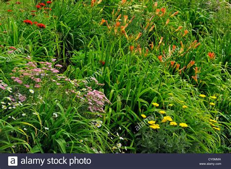 Garden With Cross Naturalized Garden Embankment With Day Lilies Maltese