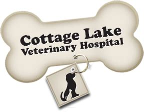vet practice in woodinville cottage lake veterinary hospital