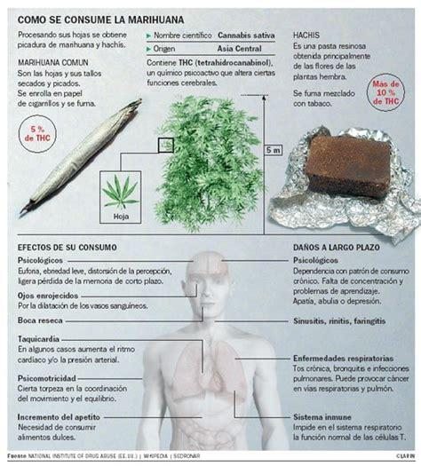 preguntas para hacer fumado m 225 s de 25 ideas incre 237 bles sobre efectos de fumar en