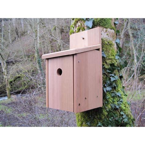 bird box cedar bird box