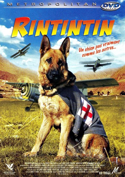 film seri rin tin tin the signal watch dog watch finding rin tin tin 2007