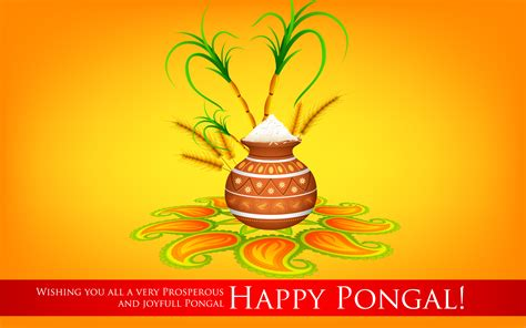 happy pongal images wallpaper photos and pics insanity flows