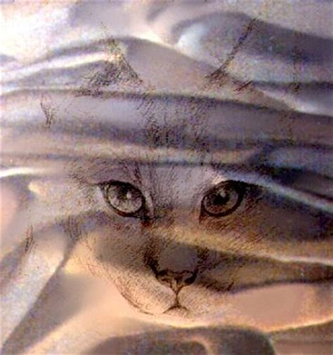 J Sharkey Sketches by Cats Painting By J Sharkey
