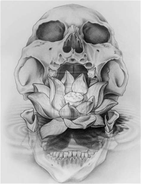 imagenes de calaveras geniales im 225 genes de tatuajes de calaveras y cr 225 neos significados