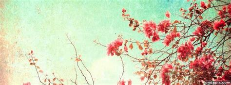 imagenes retro para portada de facebook flores vintage para portada imagui