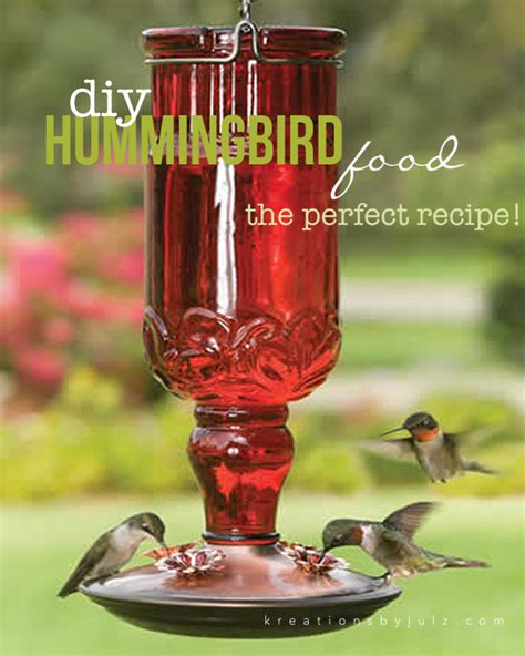 hummingbird food