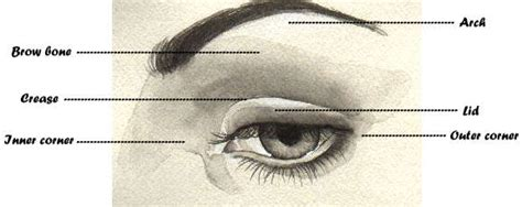 outer eye diagram the touch what s in my make up compact