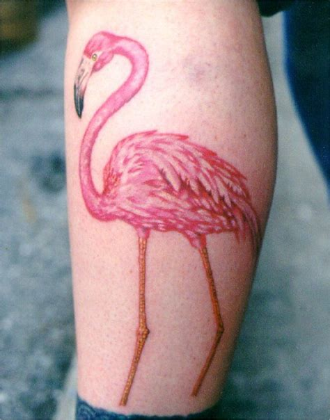 pink flamingo tattoo designs 40 best flamingo images on flamingos pink