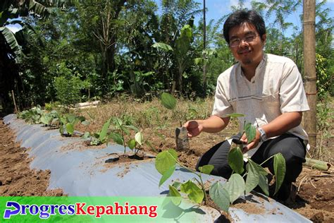 Bibit Lada Perdu Bogor segera tinggalkan posisi pjs direktur pdam karmolis