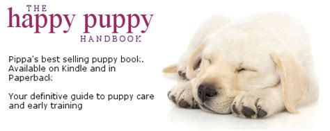 the happy puppy handbook 0091957265 house training a puppy