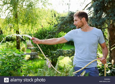 mid adult man watering garden  hosepipe stock photo