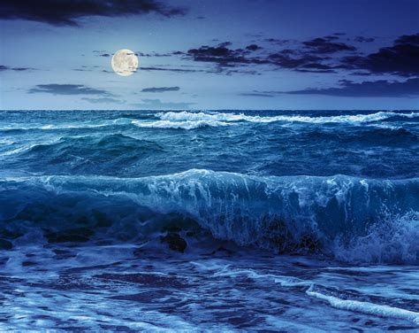 ocean scow what causes ocean tides more than the moon s gravity