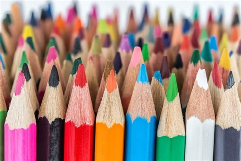 The Best Colored Pencils to Use for Beginners to