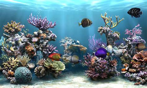 Tutorial: Keindahan laut di Monitormu