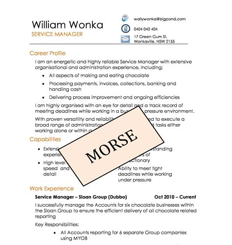 Diy Resume Template by Diy Resume Templates Absolute Sles Diy Resume