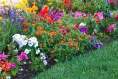 easy flower garden 1000 images about landscaping and gardening on