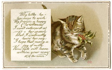 printable christmas cards cats vintage christmas image kitty with holly gift tags