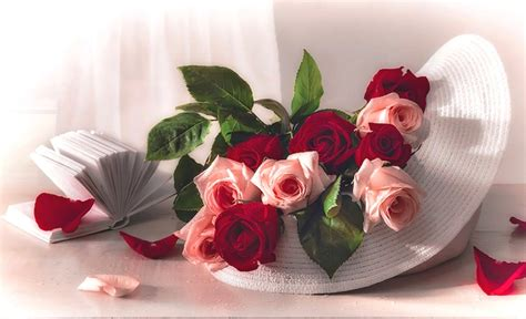 wallpaper flower gift photo collection beautiful flower gift wallpapers
