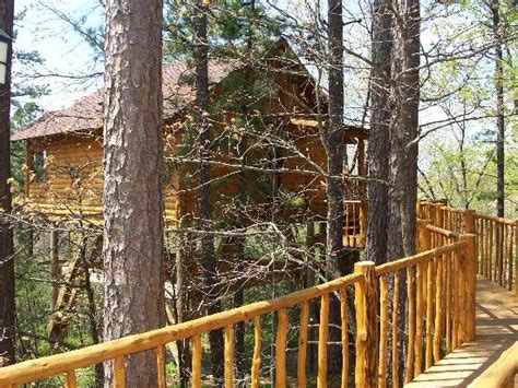 tree top cottages eureka springs interior morning of check out picture of treehouse cottages eureka springs tripadvisor