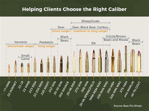 understanding gun calibers chart thepix info
