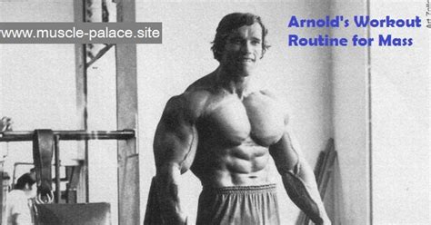 palace arnold s workout routine for mass